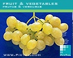 Fruit & Vegetables (CD004)