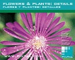 Flowers & Plants: details (CD138)