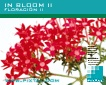 In Bloom II (CD152)