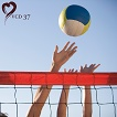 Volleyball (ILO-CDLV000037)