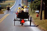 Amish family taking buggy ride. Intercourse. Pennsylvania. USA