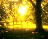 Amish Country. Pennsylvania. USA