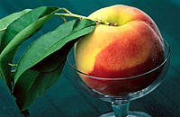 Peach i a glass