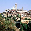 Cathedral of Santa Maria Assunta. Siena. Italy