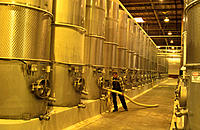 Winery, tank fermentation
