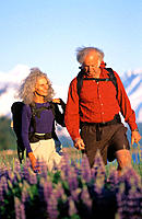 Senior couple hiking in lupine field. Chugach National Forest. Alaska. USA