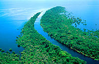 Amazon River. Rio Negro. Brazil