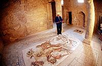 Mosaic. House of Amphitrite. Bulla Regia roman ruins. Tunisia