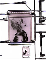 Research subject. Conceptual computer artwork of framed images of a woman´s head and shoulders, seen in profile and from the front. This may represent...