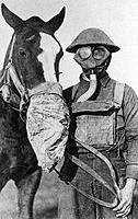 Gas masks on a British soldier and a horse during the First World War. The first use of chemical warfare was on April 22 1915, when Germany released c...