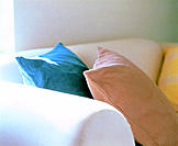 Sofa cushions