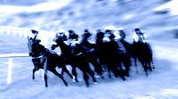 Horserace.