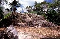 Old ruins of a staircase, Uaxactun Mayan, Guatemala