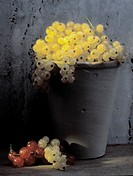 White Currants in a Clay Pot
