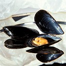 Mussels on silver tray (1)