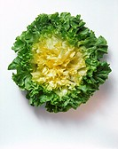 A Head of Endive Lettuce
