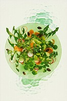 Dandelion and watercress salad with radishes and carrots