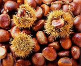 Sweet chestnuts, some with prickly shell (filling picture, 1)