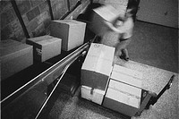 Man Unloading Boxes in Warehouse'