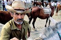 Market of horses. Holguín province. Cuba