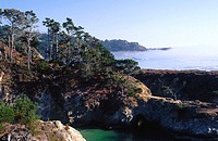 View of China Cove in Point Lobos State Reserve. Monterey County. California. USA