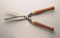 Hedge shears
