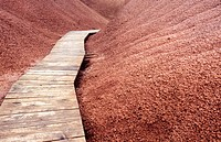 Boardwalk in Painted Hills. John Day Fossil Beds National Monument. Oregon. USA