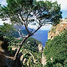 West Coast. Majorca. Balearic Islands. Spain