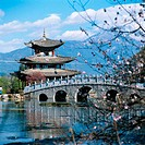 Black Dragon Pond. Lijiang. Yunnan. China