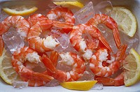 Cooked tiger prawns on ice
