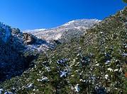 Sierra de Cazorla, Segura y Las Villas Natural Park. Jaen province. Spain