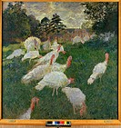 Turkeys by Monet