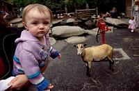 Children´´s Farmyard Stanley Park Vancouver Canada