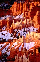 Bryce Canyon National Park. Utah. USA