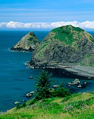 Rugged shore line, Southern coast, Oregon, USA