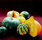 ´Squashes.  Assorted vegetables of    the    squash family   (Cucubitaceae).   These  vegetables   are native to the Americas.
