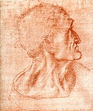 ´Leonardo da Vinci artwork. Judas´s head artwork by the Italian artist, sculptor, architect, musician, engineer and scientist Leonardo  da  Vinci  (14...