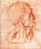 ´Leonardo da Vinci artwork. Judas´s head artwork by the Italian artist, sculptor, architect, musician, engineer and scientist Leonardo da Vinci (14...