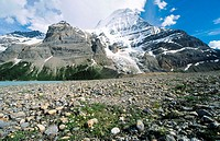 Berg Lake in Mount Robson Provincial Park. British Columbia. Canada