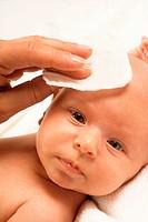 INFANT HYGIENE<BR>Model.
