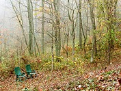 Two chairs at edge of forest in morning fog. Appalachian foothills, Southeast Ohio. USA