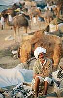 Camel fair in Pushkar. Rajasthan. India