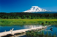 Mount Adams and Trout Lake. Washington. USA