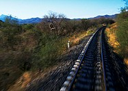 Rural train tracks