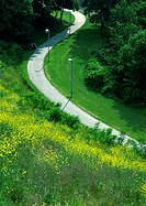 Road curving through grassy area