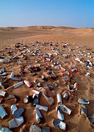 Metal cans scattered over desert terrain