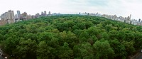 United States, New York, Central Park, treetops with skyline in background, panoramic view (thumbnail)