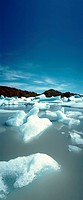 Chile, glacial ice floating in lake