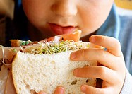 Young child eating sandwich, close-up