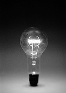 Light bulb, b&w
